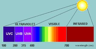 Light Spectrum Better