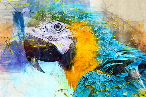 Your Screaming Parrot andYou