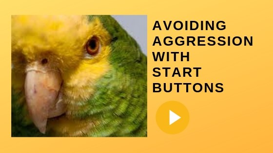 Parrots and Start Buttons