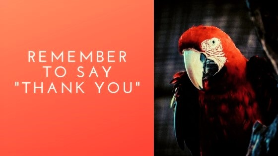 "Remember to Say ""Thank You!"""